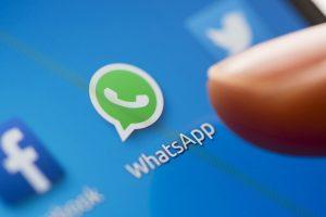NOVA ATUALIZAÇÃO: Versão beta do WhatsApp traz recurso para GIFs