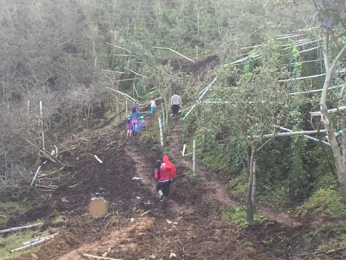 Local da tragédia em Medellín atrai dezenas de visitantes diariamente