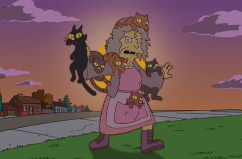 Mulher abriga 40 gatos em apartamento e causa guerra entre vizinhos