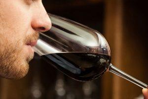 PMJP capacita profissionais de bares e restaurantes para atender consumidores de vinho
