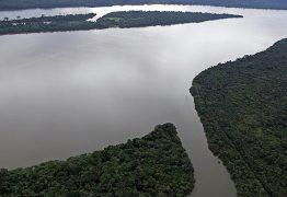 Temer veta MPs que poderiam reduzir áreas de preservação ambiental