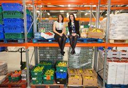 Aplicativo conecta locais com comida perto de vencer a pessoas necessitadas