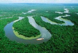 SEGUINDO NORUEGA: Alemanha poderá cortar ajuda no Fundo Amazonas