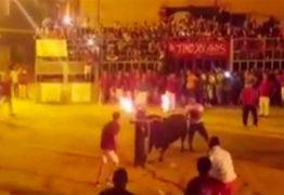"""VEJA VÍDEO: Touro com chifres em chamas """"se suicida"""" em festival na Espanha"""