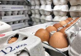 17 países relatam ter recebido ovos contaminados por pesticida