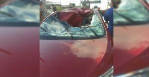 acidente br - Homem pula de passarela e cai em cima de veículo