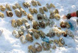 SIBÉRIA: mãos decepadas e achadas no gelo são parte de 'arquivo de digitais'