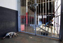 Toffoli nega habeas corpus a homem condenado por furtar bermuda de R$ 10