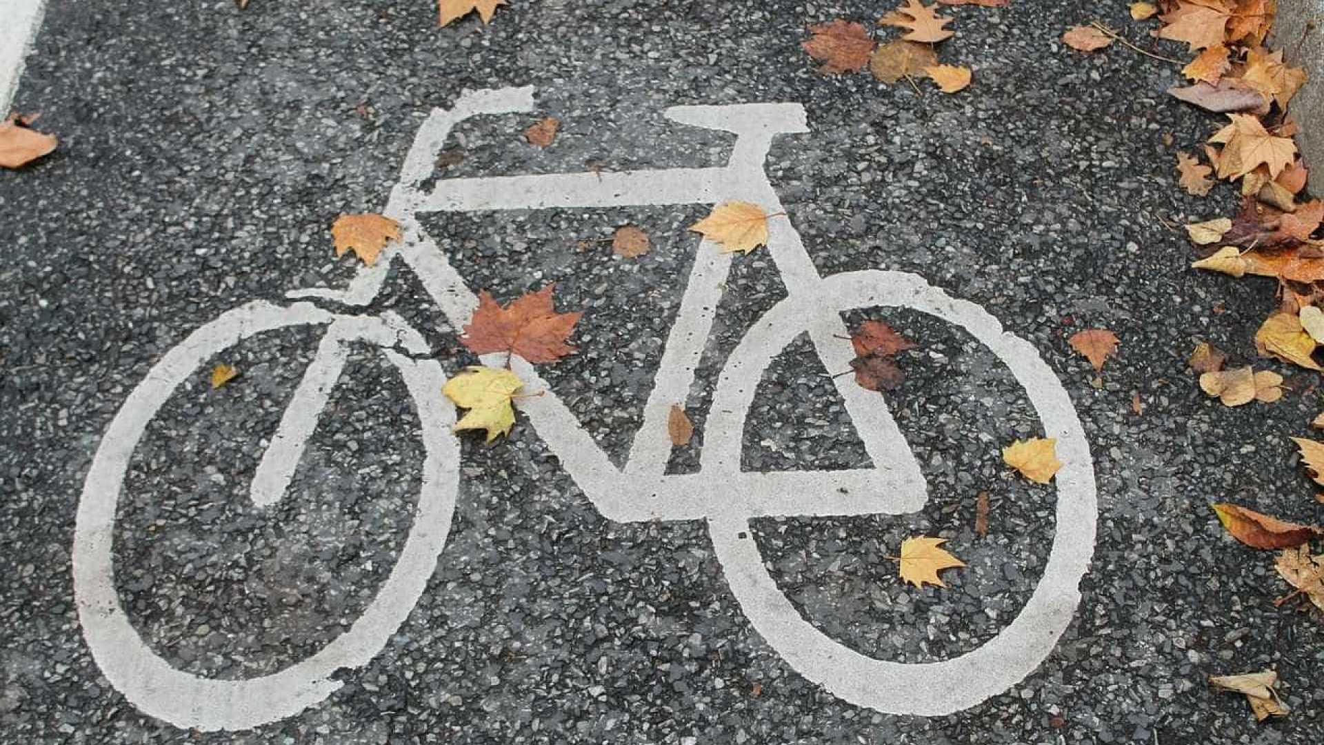 naom 55c1d055c305e - Criança cai de cadeirinha de bicicleta e morre atropelada