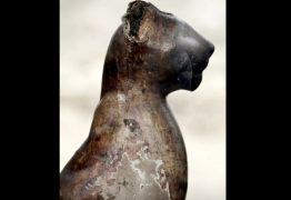 Arqueologistas encontram tumbas com múmias de gato no Egito