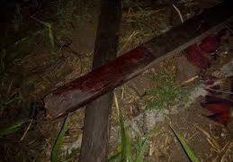 CRIME: Suspeito de assassinar sogro a pauladas é preso em Campina Grande