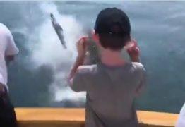Tubarão branco ataca família que estava pescando – VEJA VÍDEO