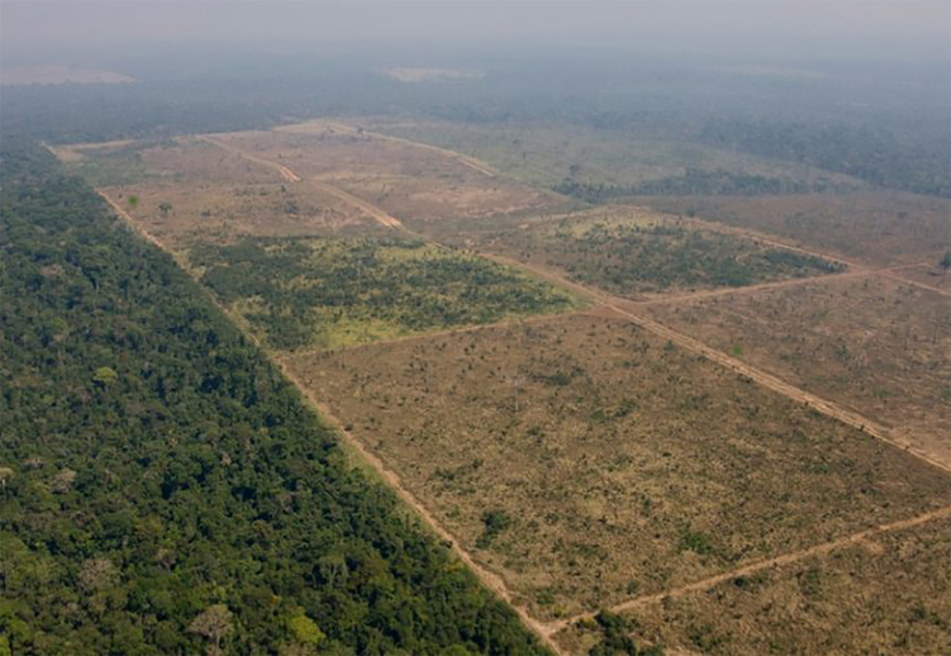 demarcação de terras - POR UNANIMIDADE: STF derrota governo e mantém demarcação de terras indígenas com Funai