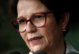 Ministra da agricultura diz não entender preocupação com queimadas e garante: 'Floresta se regenera sozinha'