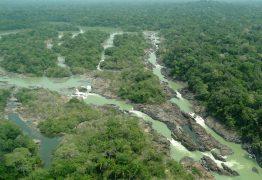 PREOCUPAÇÃO GLOBAL: Dados oficiais de desmatamento da Amazônia confirmam alertas nos últimos 3 anos