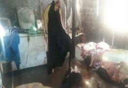 Após denúncia, Polícia fecha matadouro clandestino em Campina Grande
