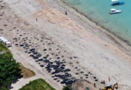 Governo Bolsonaro impõe silêncio sobre óleo nas praias do Nordeste: 'Se alguém abrir a boca é exonerado'