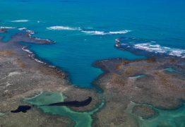 Estudo aponta mancha gigante e possível origem do óleo que atinge o Nordeste
