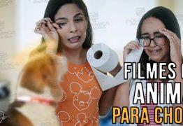 FOCALISTA: Veja 5 opções de filmes com animais que abalam o emocional