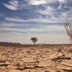 Seca 150x150 - Seca na Paraíba é a mais severa desde fevereiro de 2020