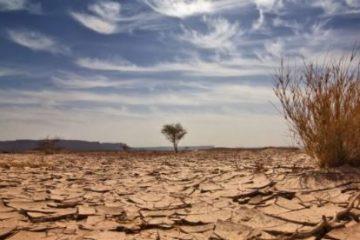 Seca 360x240 - Seca na Paraíba é a mais severa desde fevereiro de 2020
