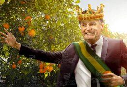 Pomar da impunidade – No país das laranjas absolvição para quem for amigo do rei! – Por Francisco Aírton