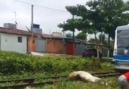 Criança é atropelada por trem enquanto andava a cavalo em Várzea Nova – VEJA VÍDEO