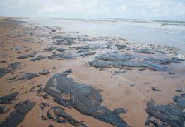 Polícia Federal apura possível crime ambiental em litoral brasileiro