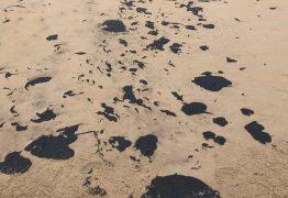 PF apura possível crime ambiental em litoral brasileiro