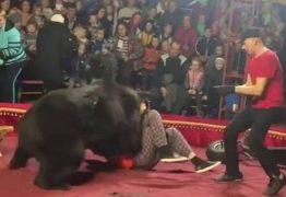 Urso ataca adestrador durante apresentação em circo; VEJA VÍDEO