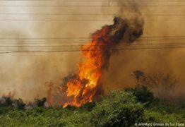 Após 13 dias de incêndio, bombeiros controlam fogo no Pantanal