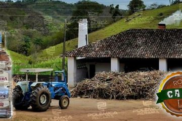 Rota da Cana Ipueira 360x240 - ROTA DA CANA: Cachaça Ipueira e o processo de produção artesanal que é uma verdadeira obra de arte