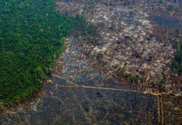 Amazônia perde 9.700 quilômetros quadrados em um ano, maior desmatamento da década
