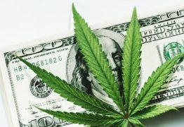 """ONG americana busca interessados em receber R$ 12 mil por mês para """"fumar maconha"""""""