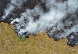 Queimadas da Amazônia podem aumentar derretimento das geleiras