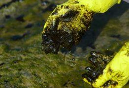 Manchas de óleo: chega a 779 número de localidades afetadas