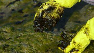 naom 5db9c6f93f524 300x169 - Manchas de óleo aparecem no Delta do Parnaíba, litoral do Piauí