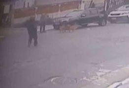 Empresário é executado a tiros durante passeio com cachorro – VEJA VÍDEO