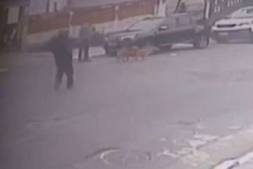 133561 360x240 - Empresário é executado a tiros durante passeio com cachorro - VEJA VÍDEO