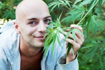 Cannabis and cancer 1 1024x681 360x240 - BRISA DIFERENTE: Quem realmente parece 'doidão' quando o assunto é maconha?