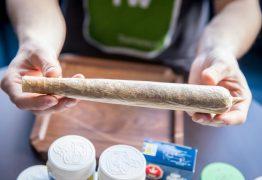 Homem fuma charro de meio quilo para provar às autoridades que era para consumo próprio