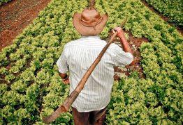Ex-prefeita paraibana é condenada por desviar recursos destinados a agricultores familiares