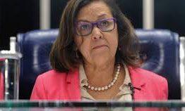 Difícil crer que Bolsonaro ignora esquema de fake news, diz deputada