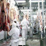 frigorífico 150x150 - 'Preço da carne não vai voltar ao que era antes', diz Sindifrigo
