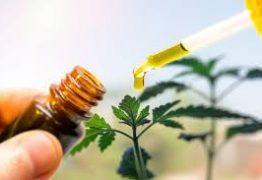 Plano de saúde não pode negar medicamento à base de Canabidiol