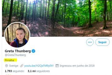 pirralha 360x240 - Após ser ofendida por Bolsonaro ativista Greta Thunder adota o xingamento 'PIRRALHA' no Twitter