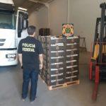 policia federal 150x150 - 1,2 TONELADA DE COCAÍNA: Polícia Federal prende cinco pessoas que tentavam despachar droga pelo Porto de Natal