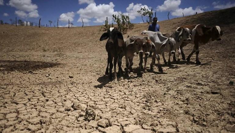 seca 1 - Pesquisador prevê uma década sem seca rigorosa no Sertão
