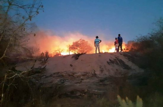 No Cariri da Paraíba: Incêndio de grandes proporções atinge zona rural de Monteiro