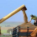 transferir 6 150x150 - China pode tirar taxa para soja e porco dos EUA e isso deve afetar o Brasil